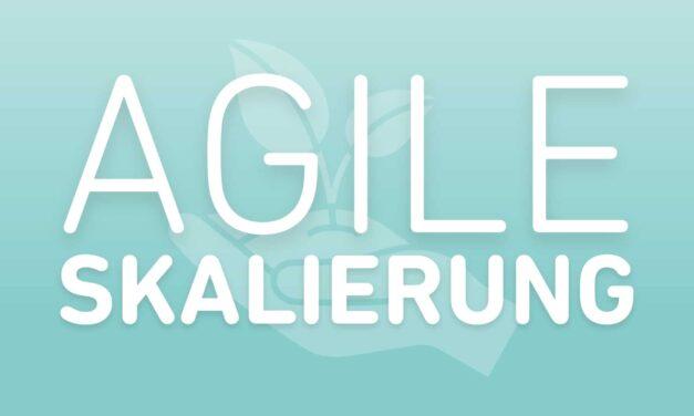 9 Tipps für die agile Skalierung